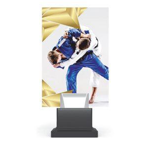 Statuetka CONNECT+ Glass CG01/JUD statuetka Judo